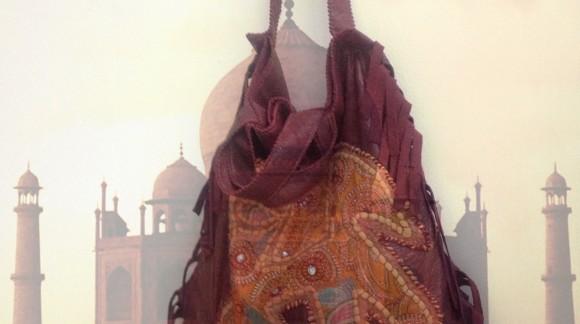Estrodiverso in viaggio tra palazzi elefanti e tessuti indiani